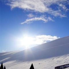 Passo del Tonale, Campionato Italiano Snowkite