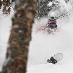 Fill up on powder in the woods at Jay Peak. Photo Courtesy of Jay Peak Resort.