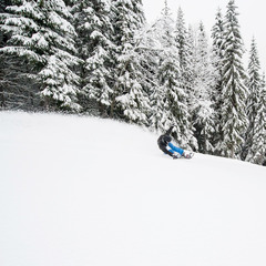 Powder day in Trysil