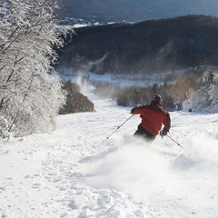 A skier finds fresh powder at Waterville Valley. Photo Courtesy of Waterville Valley.