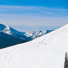 Time your trip right and enjoy Vail's legendary back bowls on a blue sky powder day. Locals swear this is one of the reasons they stick around season after season after season. - ©Jack Affleck