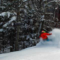 Fresh tracks at Attitash in New Hampshire.