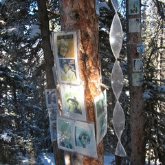 Windchimes donated for the John Denver Shrine. - ©Amanda Rae