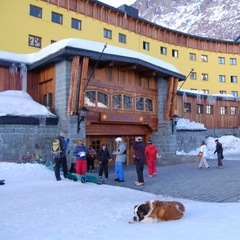 Radka, the hotel's Saint Bernard, in a typical position in front of the Hotel Portillo. - ©Cindy Hirschfeld