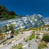 Botanischer Garten - ©Graz Tourismus | Harry Schiffer