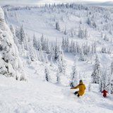 Snow is Falling: #WinterIsComing - © Whitefish Mountain Resort
