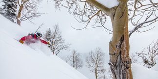 Best Ski Resorts for Presidents' Day Powder ©Liam Doran