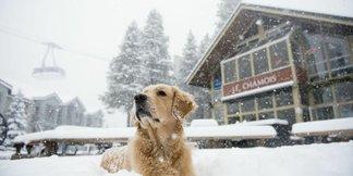 Sciare low cost in Valle d'Aosta - Inverno 2014/15 - ©Le Chamois and Loft Bar