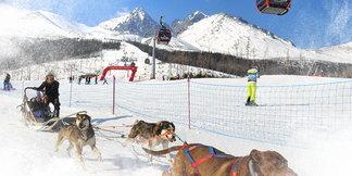 Snežné psy v Tatranskej Lomnici v tomto roku aj s polárnikom Amundsenom ©TMR, a.s.