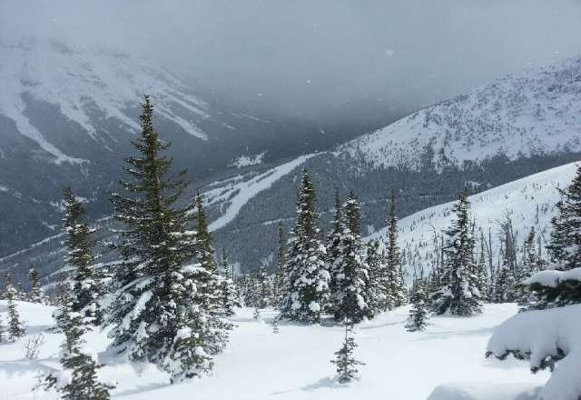 Pow day! lots of chop, heavy, wet powder. No complaints here!