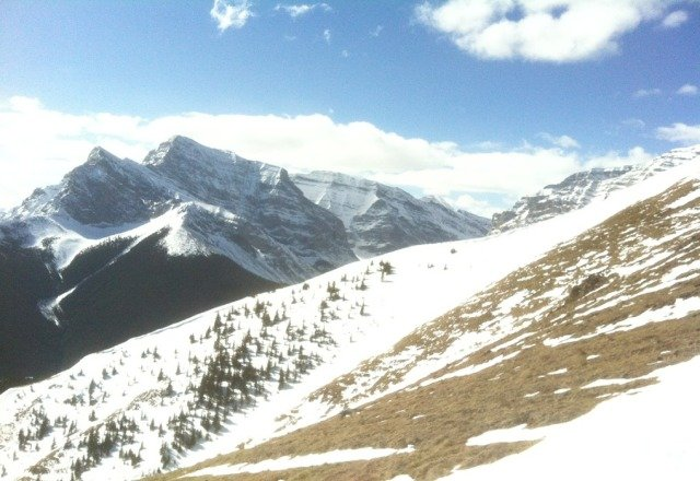 bluebird day, mostly soft snow. some bare spots