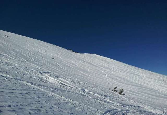 Condition was sheer perfection. Plenty of powder to be had if you were willing to hike a little.