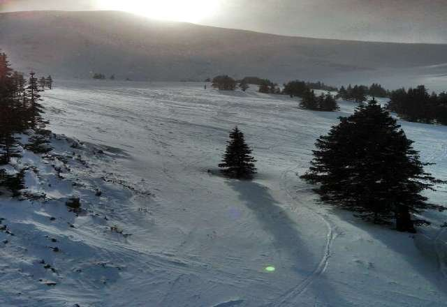 2/23 Saturday - Beautiful end of day sunshine conditions.