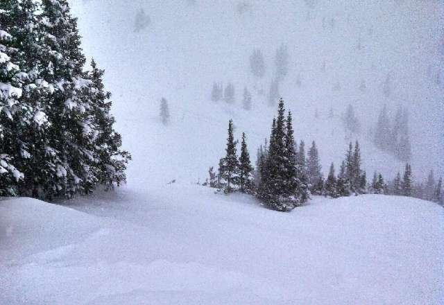 It was sick today!!... snowed heavy all day, mad freshies!