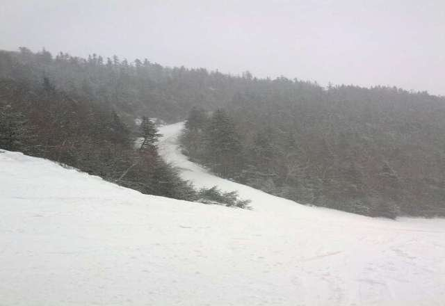 nice conditions Wednesday! snowing all day, not crowded!