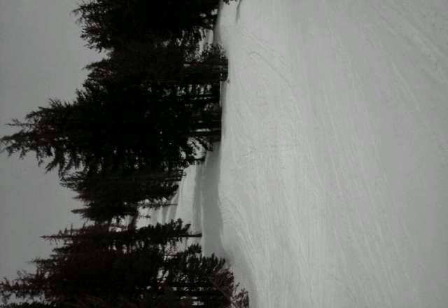skied. Sun great time thx