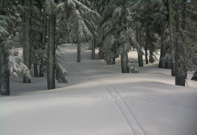 Fresh tracks on Cinco de Mayo!