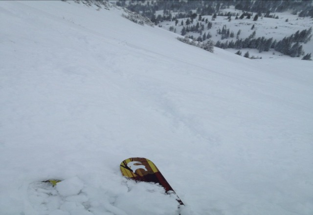 """11"""" resort wide and knee-deep pow off Greeley and Catherines. Best conditions (by far) in UT right now."""
