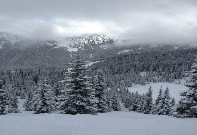 sick pow day but really busy.