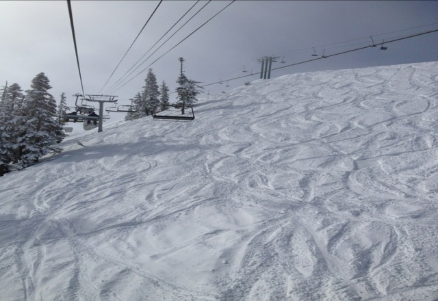 Epic fresh powder day. Still winter in April at White Pass with no lift lines!