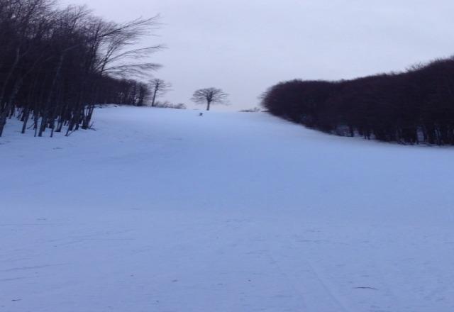 si scia dal rifugio sopra fino al rifugio intermedio. A valle non c'? neve. Da marted? fiocca di nuovo.