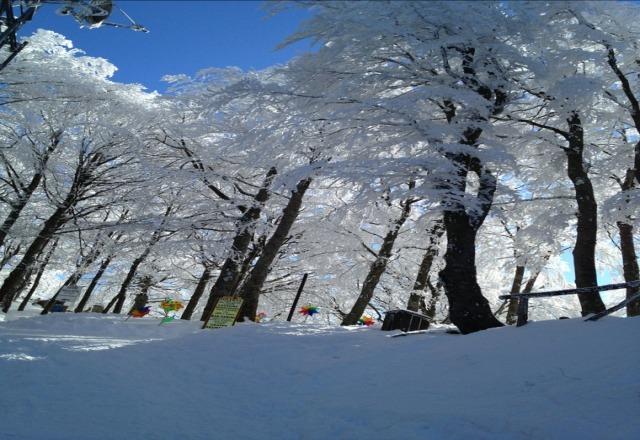 Bella neve e bel sole oggi!!