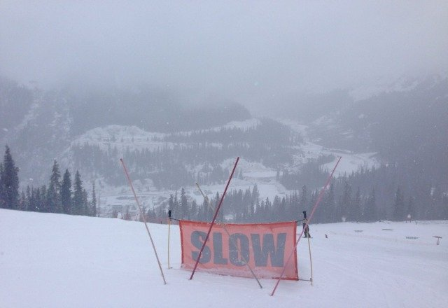 great 2nd day at the basin. great snow and not that crowded. keep the snow going