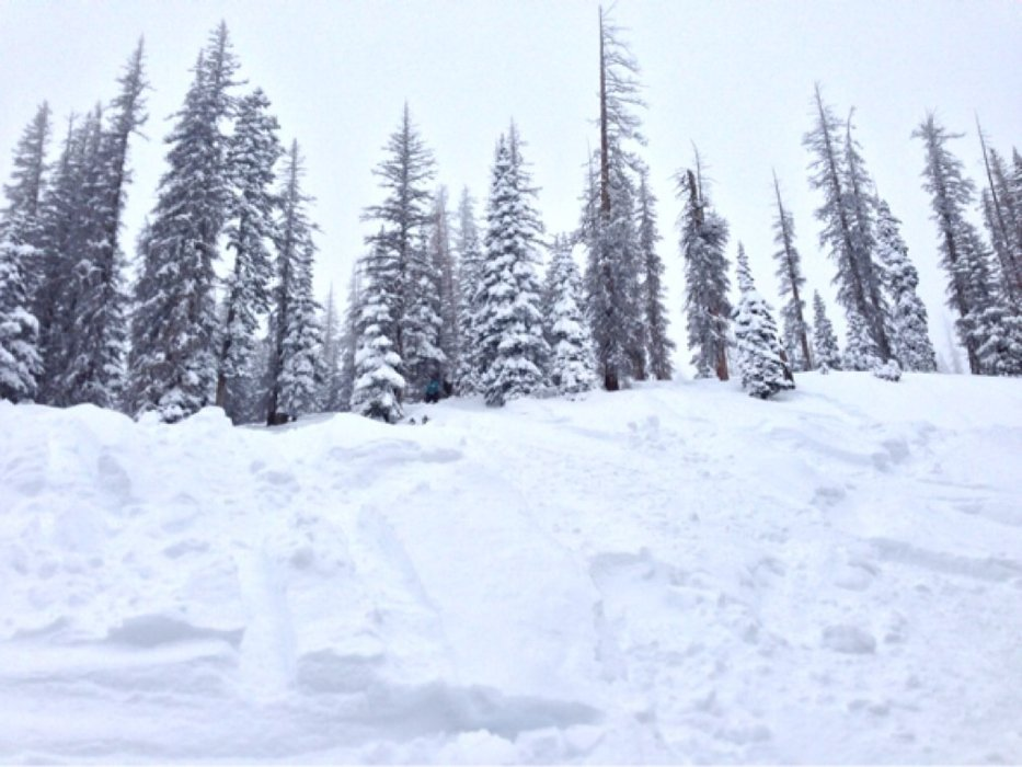 """There was enough fresh powder for everyone this weekend in Wolf Creek.  34"""" in 3 days :)"""