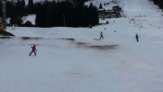 The little snow in the ground is becoming thinner and slushier by the hour.  not cold enough to refreeze. all open slopes getting browner over the last 2 days. hoping for a good dump of fresh snow tonight