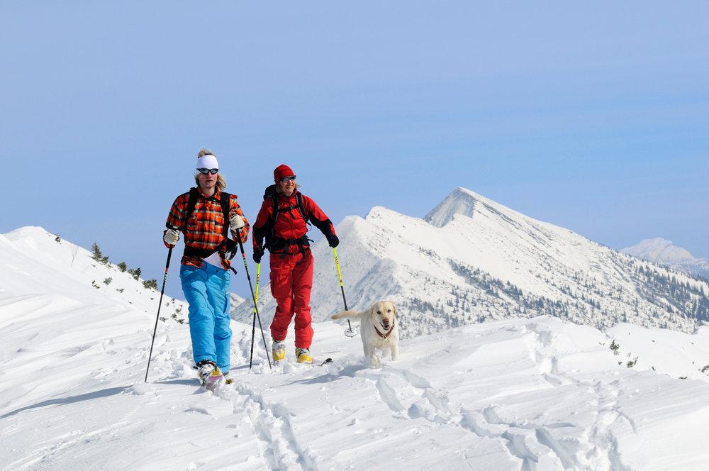 Skitour auf das Dürrnbachhorn - © Norbert Eisele-Hein