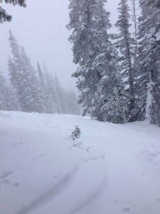 Came down till about 3. Powder everywhere !