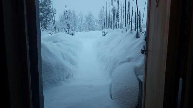 20 cm. nysnø er ikke vondt å våkne opp til!!!!
