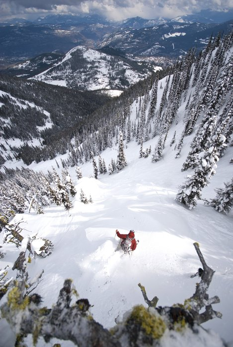 Trees and powder are part of Red Resort's famed terrain.  - © ©marseille
