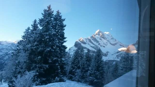 am mittwoch 22.01.14 mit Neuschnee. Der Schnee ist sehr knapp.