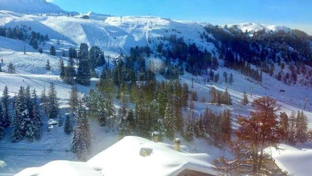 Lovely fresh powder! Best snowfall all season