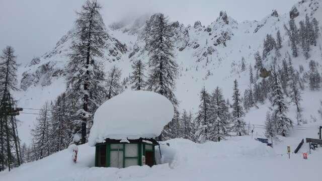 amazing snow.
