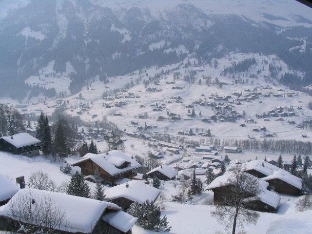 Blick auf Grindelwald - © Sebastian Lindemeyer