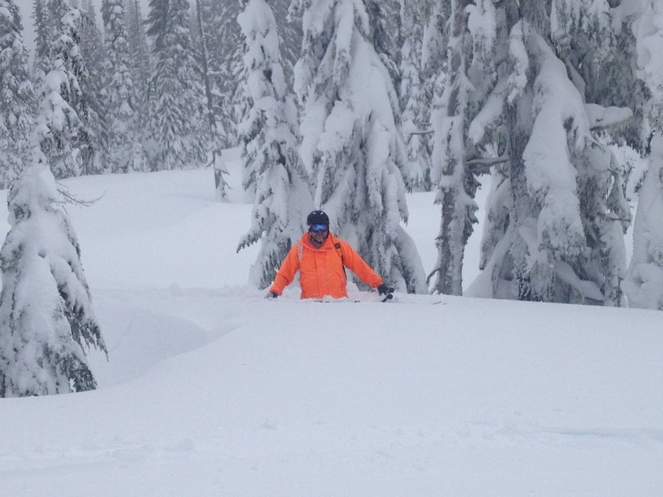 waist. deep. powder.   Oh...and no lift lines :-)