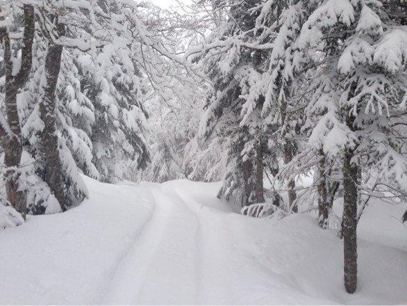 Magnifique neige déjà 40 cm depuis ce matin, un régal.