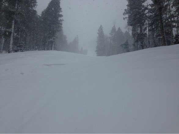 It's been awesome the last few days fresh snow both days and tons of powder today!