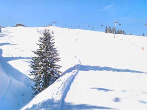 pistes parfaites le matin... un véritable régal de skier sur une neige si bonne