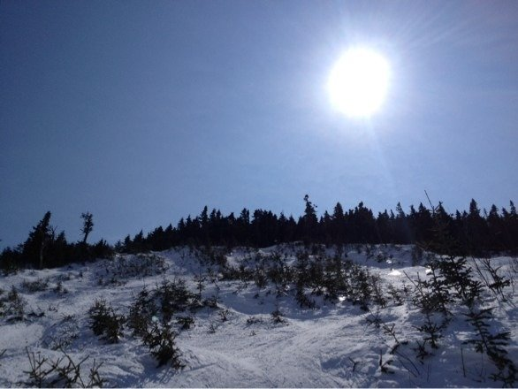 Legit. Old Superstar headwall was ripe.. Glades r pow filled to the brim.