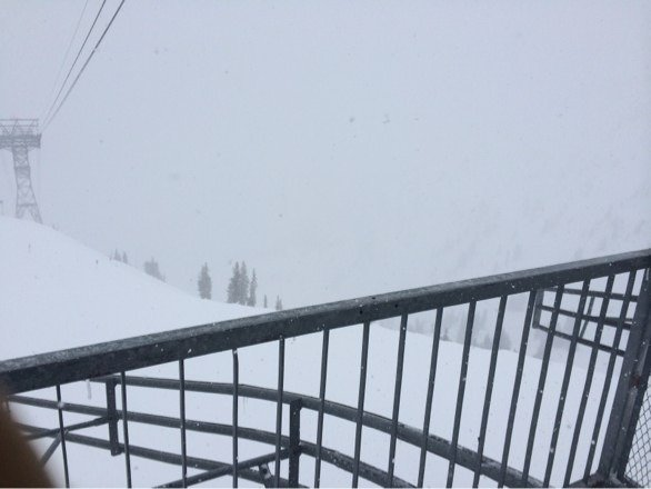 It was insane at the bird today. Road to Provo did not open Wednesday should be amazing. It's just puking. Most snow of the year.
