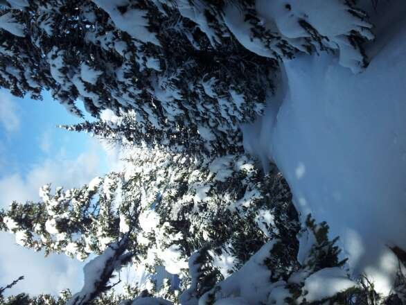 gorgeous day!!lots of fresh powder in the trees :-)  not too sloppy @this time for spring!!