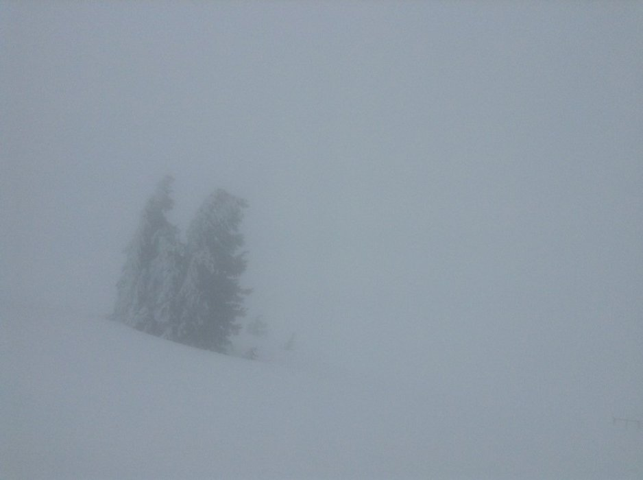Pea soup visibility mid-day at Stormin Normin. Early morning better, slow soft snow mid-day.