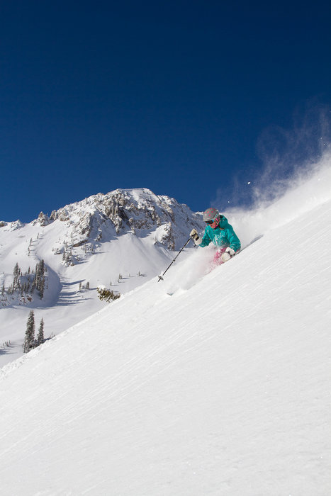 The powder at Snowbird is dry, light, effortless and glorious. - © Snowbird Ski and Summer Resort