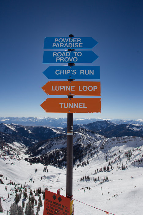 Snowbird's famed terrain provides endless lines to explore. - © Cody Downard Photography