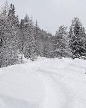 Alpe di Mera - ©iceblack @ Skiinfo Lounge
