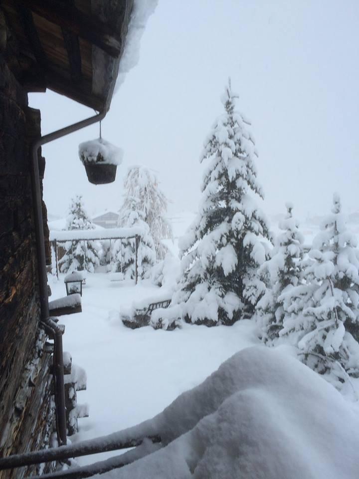 Ordentlich Neuschnee in Livigno (17.11.14) - © Livigno