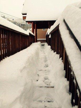 Actual snowstorm total 29